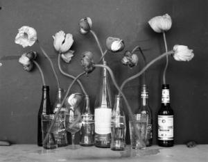 tulips in bottles