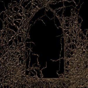 branch_frame